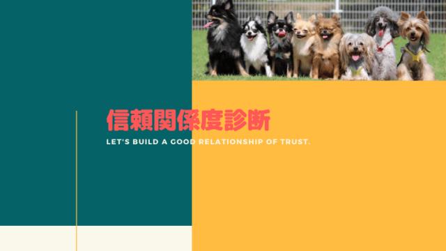【信頼関係度診断】愛犬との信頼関係度をチェックしてみよう!